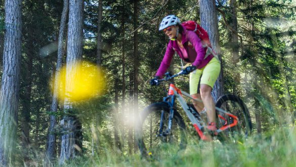 Bike and Wellness short stay 4 days